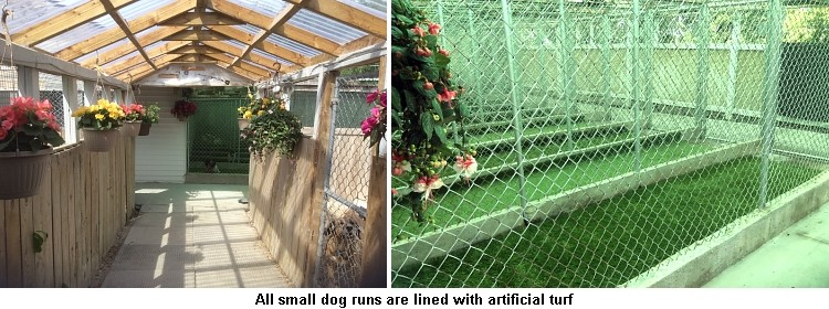Dog Kennels Cleaned Daily
